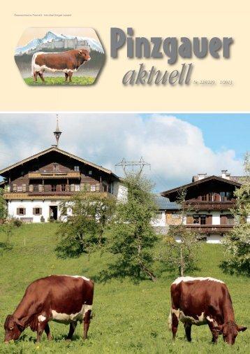 Pinzgauer Aktuell 01-2013 PDF-Dokument: 6,33 MB