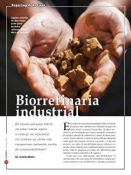 Biorrefinaria Biorrefinaria industrial - Revista O Papel