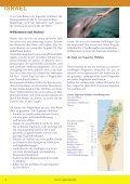 tel aviv - Superstar Holidays - Seite 2
