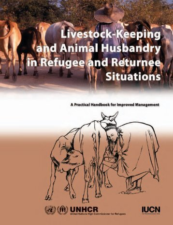 Livestock-Keeping and Animal Husbandry in Refugee and Returnee ...