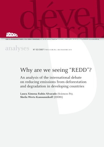 "Why are we seeing ""REDD seeing ""REDD""? - Iddri"