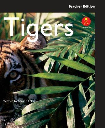 L13 TEpp Tigers