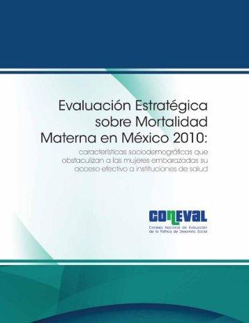 Evaluación Estratégica sobre Mortalidad Materna en ... - Coneval