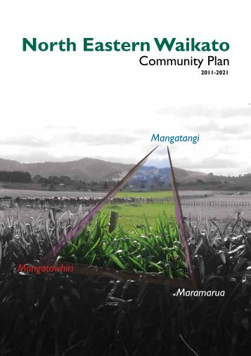 North Eastern Waikato Community Plan - Waikato District Council
