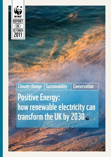Positive Energy: how renewable electricity can transform ... - WWF UK