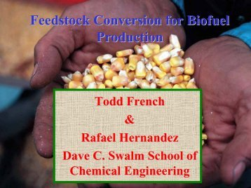 Feedstock Conversion for Biofuel Production