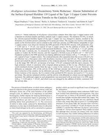 Alcaligenes xylosoxidans Dissimilatory Nitrite Reductase: Alanine ...
