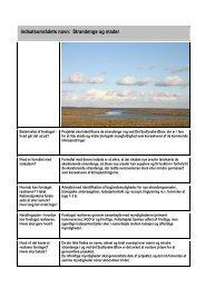 Indsatsområdets navn: Strandenge og mader - Nationalpark Sydfyn