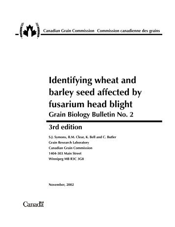Identifying wheat and barley seed affected by fusarium head blight