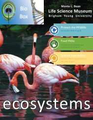 Ecosystems - Monte L. Bean Life Science Museum - Brigham Young ...