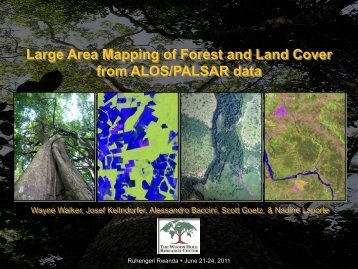 Introduction to forest and land cover mapping - Woods Hole ...