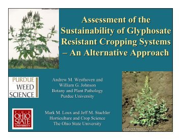 Assessment of the Sustainability of Glyphosate Resistant Cropping ...