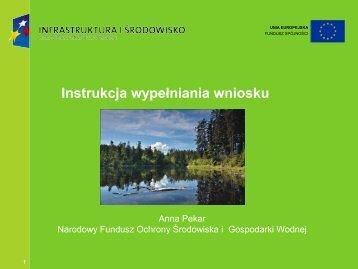 prezentacja_szkolenie_Instrukcja_do_wniosku - Centrum Informacji ...