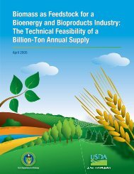Biomass as Feedstock for a Bioenergy and Bioproducts Industry ...