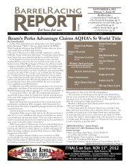 Beam's Perks Advantage Claims AQHA's Sr World Title