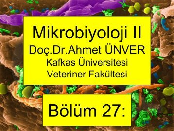 27. Camp, Arco, Helico - Kafkas Üniversitesi