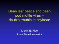 Bean Leaf Beetles and Bean Pod Mottle Virus