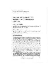 visual processing in monkey extrastriate cortex - BACK