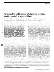 Functional immobilization of signaling proteins ... - ResearchGate