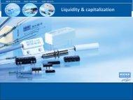 Liquidity & capitalization - MEDER electronic