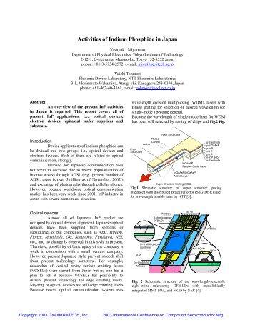 Activities of Indium Phosphide in Japan