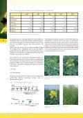 Koolzaad, van zaad tot olie - Vlaanderen - Page 7