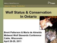 Strategy for Wolf Conservation In Ontario