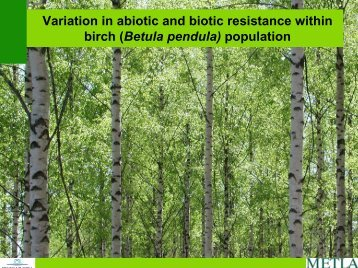 Variation in abiotic and biotic resistance within birch (Betula pendula ...
