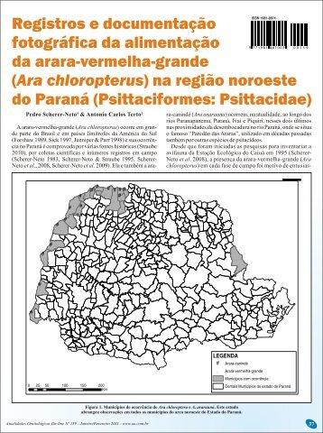 Ara chloropterus - Atualidades Ornitológicas