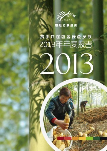 2013-Annual-Report-Chinese