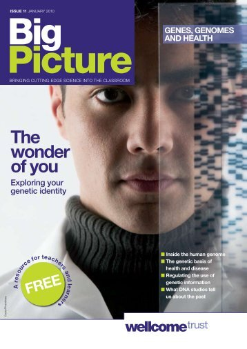 Big Picture - Wellcome Trust