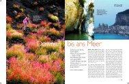 Artikel als PDF downloaden - Frosch Sportreisen