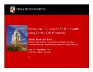 Reduction of E. coli O157:H7 in cattle using Direct-Fed Microbials