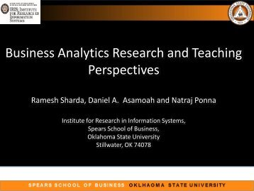 Business Analytics Research and Teaching Perspectives