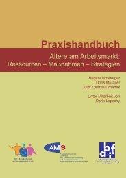 Praxishandbuch downloaden (1762 kB) - Arbeit und Alter