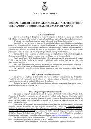 Disciplinare per la caccia al cinghiale - Provincia di Napoli