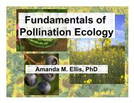 Fundamentals of Pollination Ecology