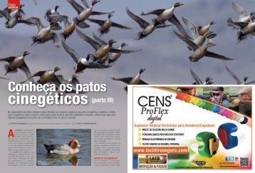 Rodrigues, D. 2012. Conheça os patos cinegéticos (parte III). - ESAC