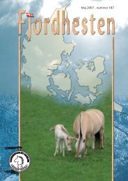 nr. 187 - Fjordhesten Danmark