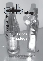 Silber spiegel - SwissEduc