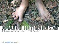 Dokumentation zwei Jahre DBU-Projekt - Urwald vor den Toren der ...