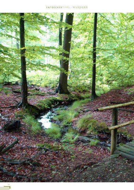 Bad Münder Coppenbrügge - Flecken Salzhemmendorf