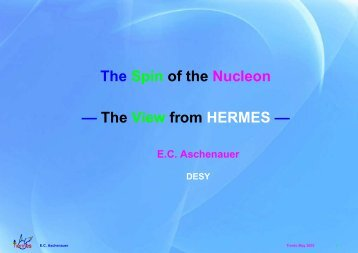 The Spin of the Nucleon — The View from HERMES — - BNL theory ...