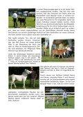 Oktober 2011 - Noteselhilfe - Seite 6