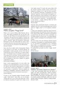 i grandi trek - Trekking Italia - Page 5