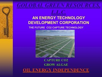 Sam Shepard - Mississippi Biomass and Renewable Energy Council