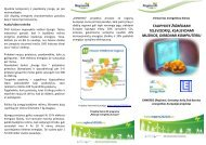 Download the Publication - Regions 202020