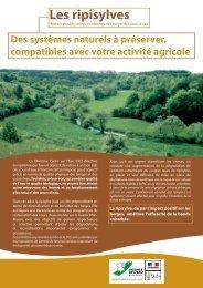 Les ripisylves - Agence de l'Eau Rhin-Meuse