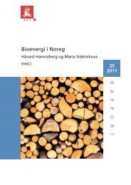 RAPPOR T Bioenergi i Noreg