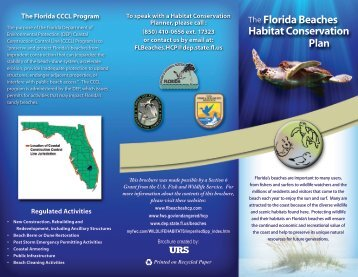 The Florida Beaches Habitat Conservation Plan